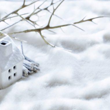 アーユルヴェーダ~季節の養生法 冬